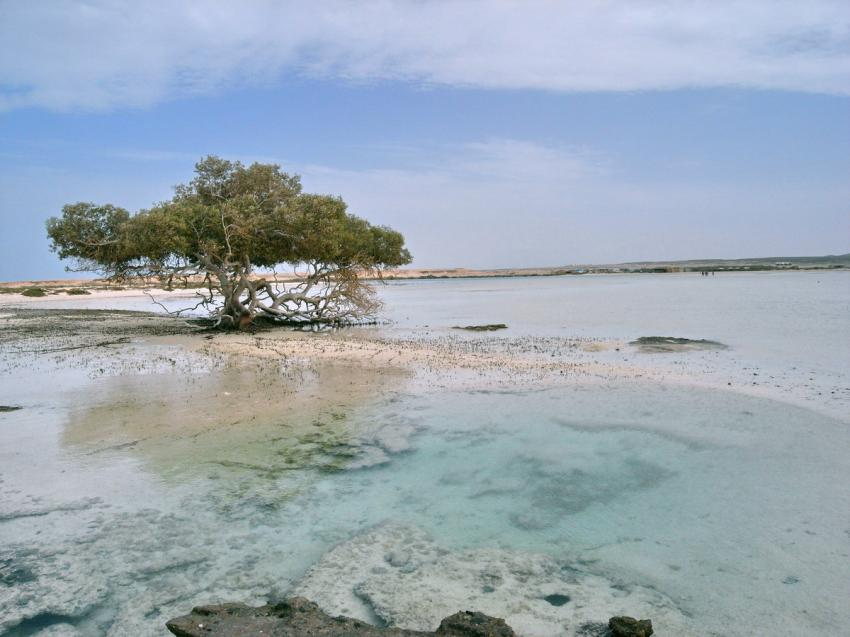 Abu Gusum - Wrack, Abu Gusum - Wrack,Ägypten,Lagune,Strand,Mood