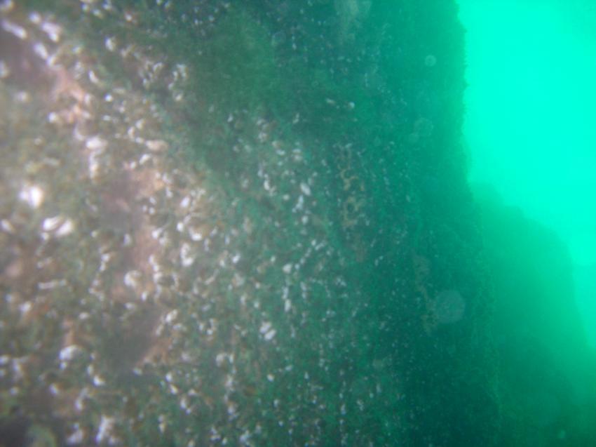 Gardasee allgemein, Gardasee allgemein,Italien