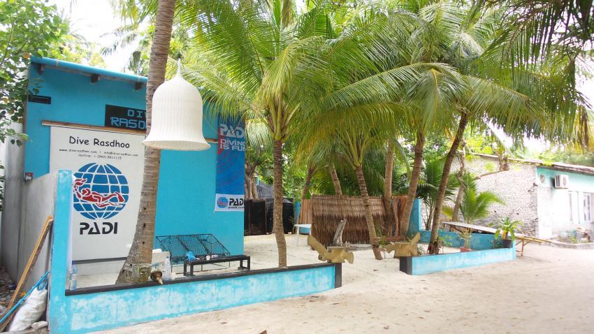 Dive Rasdhoo, Malediven
