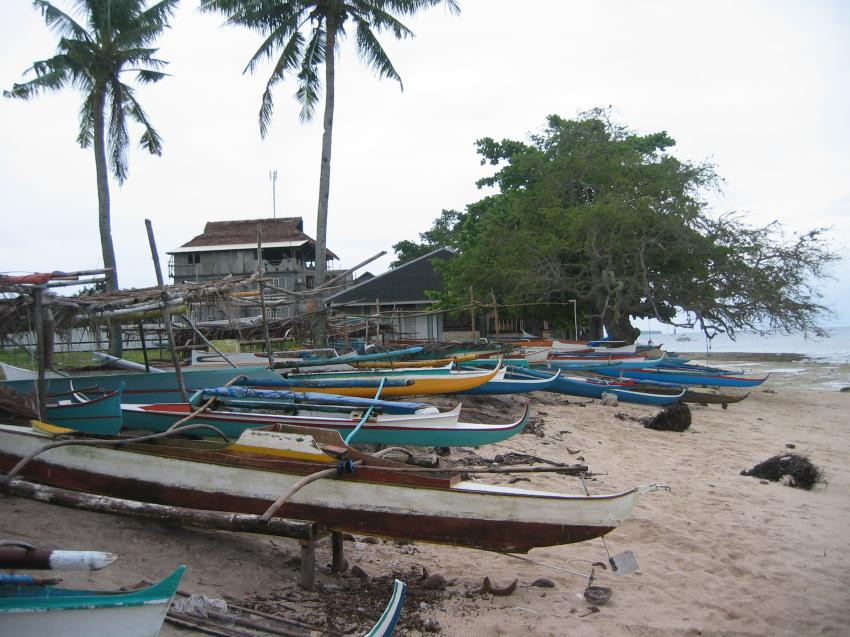 Moalboal, Moalboal & Malapascua,Philippinen,Fischerboote,Strand,Auslegerboote