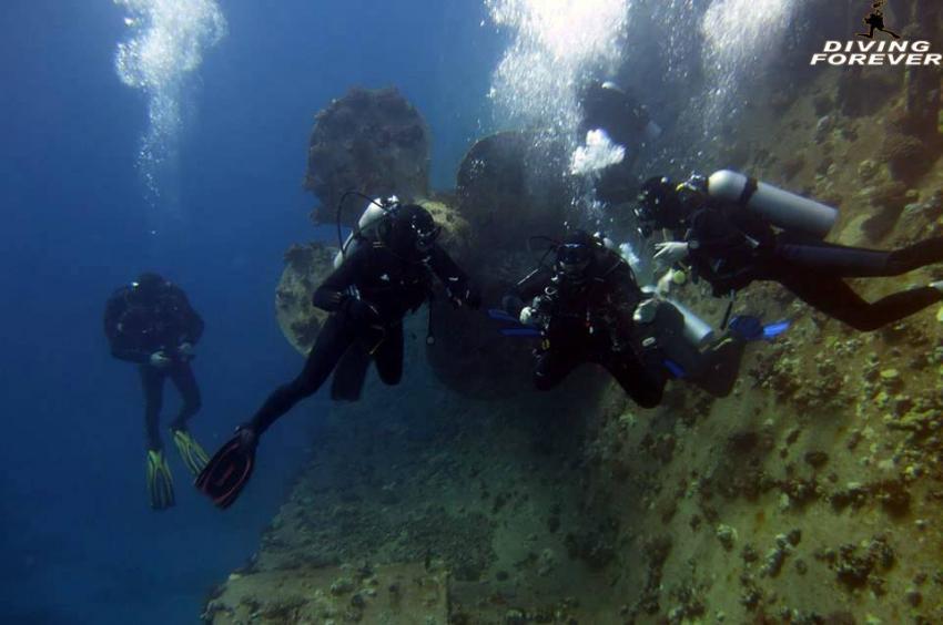 tauchschule hurghada , tauchschule hurghada, Diving Forever Hurghada, Ägypten, Hurghada