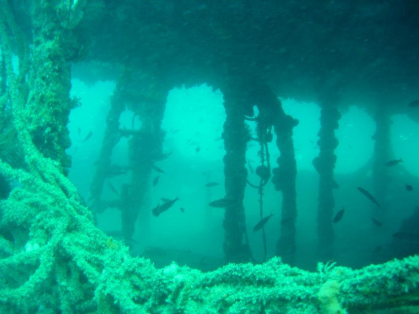 Wrack Coriolanus, HMS Coriolanus,Novigrad,Kroatien