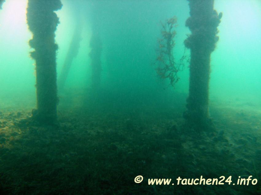 Ostsee Flensburger Förde, Flensburger Förde,Schleswig-Holstein,Deutschland,Schleswig Holstein