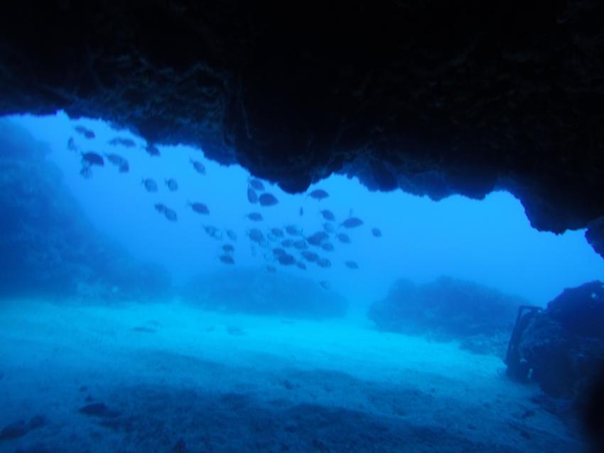 Dolphin's Diving Center Lloret, Spanien, Spanien - Festland