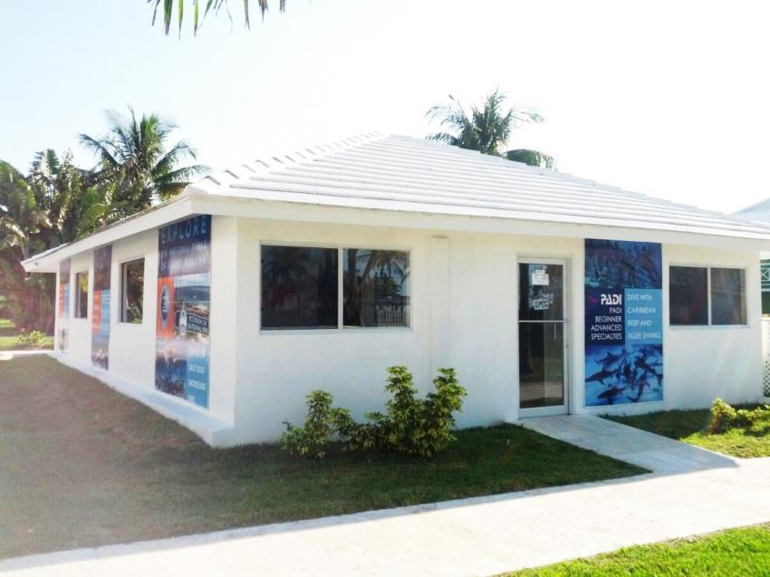 Reef Oasis Viva Bahamas, tauchen auf bahamas, tauchen mit haien, tauchbasis bahamas, Viva Diving, Grand Bahama, Bahamas