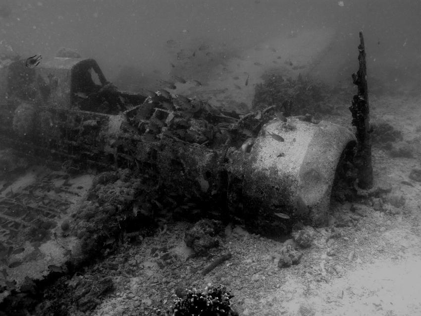 Flugzeugwrack - schwarz weiss