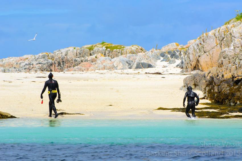 Cairns of Coll - Lagune, Lagune, Cairns of Coll, Seehunde, Schottland, Basking Shark Scotland, Großbritannien
