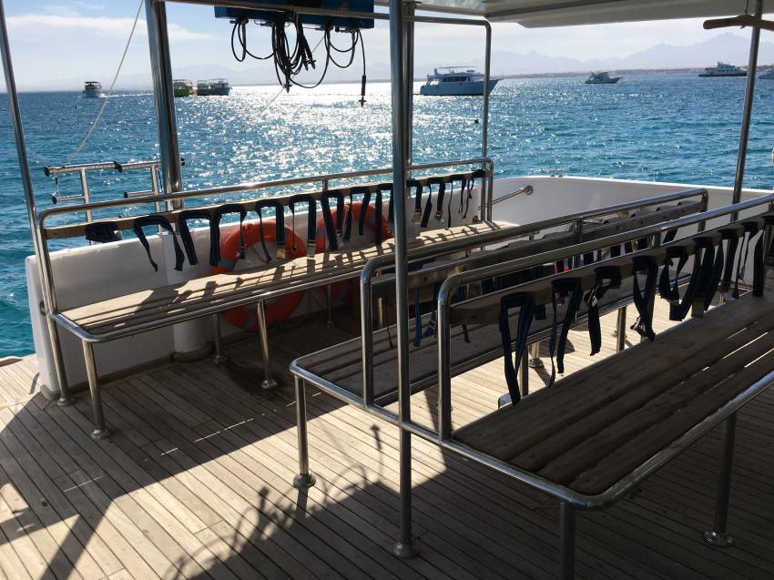 SimSim Dive Tauchdeck, Ägypten, Hurghada, Tauchsafaris, Tauchen, Salon, Angebote, Rotes Meer, SimSim, Red Sea, SimSim Dive