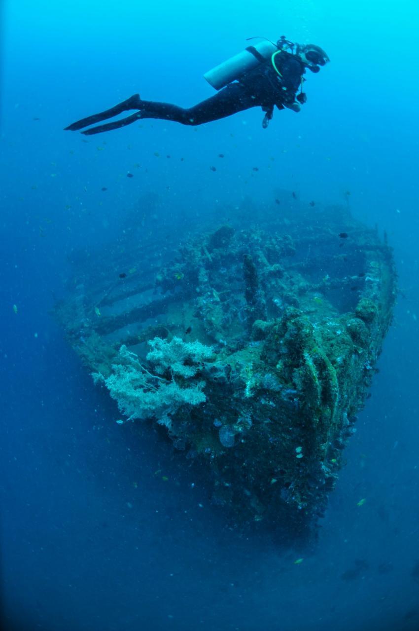 Molas Schiffswrack, Thalassa Dive Resorts Indonesia, Indonesien, Sulawesi
