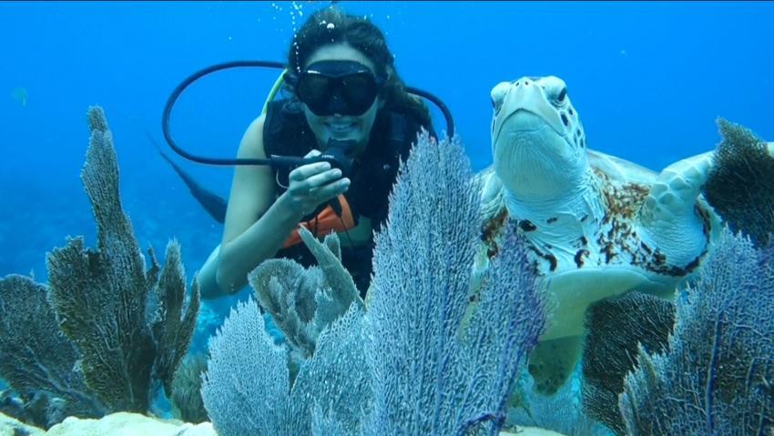 Sons of Poseidon, Key Largo, USA, Florida