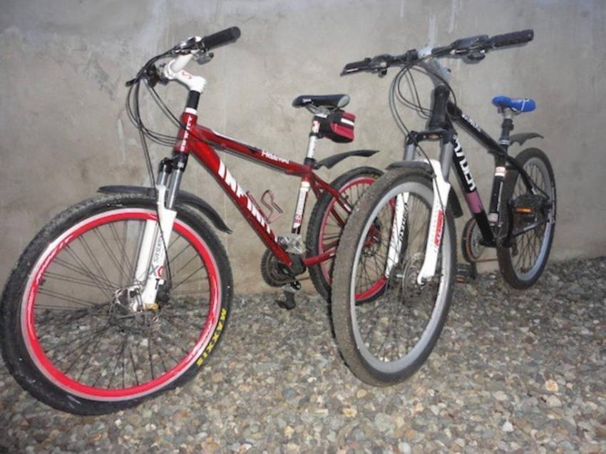 Mountenbike Vermietung, Parrot Resort Moalboal, Philippinen