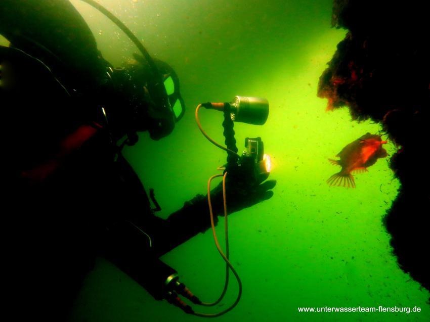 Tauchen Flensburg, UWT Unterwasserteam Flensburg, Deutschland