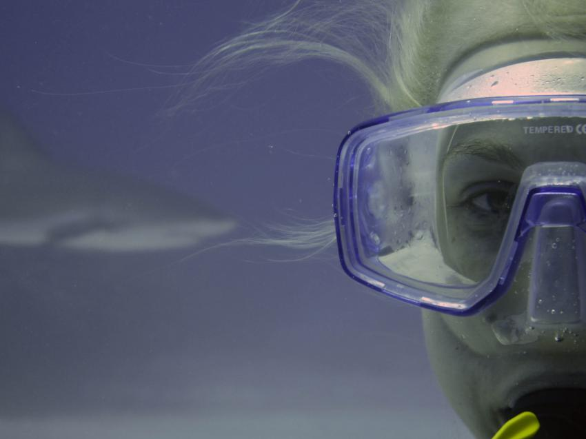 Viva Diving, Grand Bahama