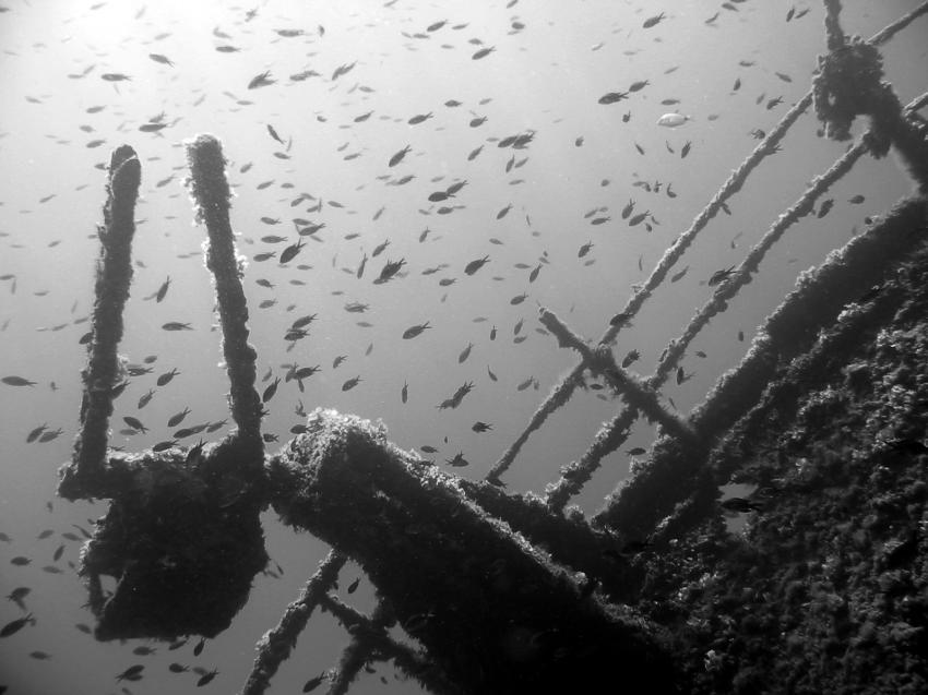 Elba, Elba,Italien,Wrack,schwarz-weiß Aufnahme