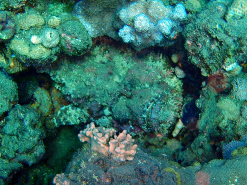 Na´ama Bay, Naama Bay (Sharm El Sheikh),Ägypten