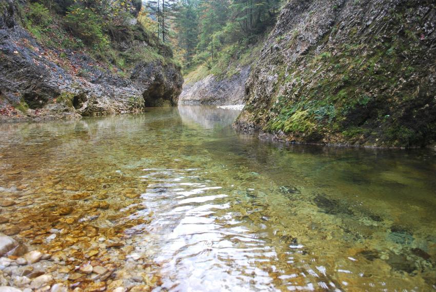 Weißenbach, Mitterweißenbach, Tauchen in kristallklaren Gebirgsbachgumpen