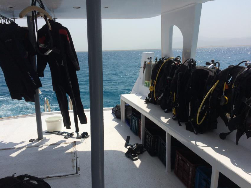 beim Bootsausflug auf der Ghareb mit zwei Tauchgängen ab Safaga, Extra Divers Sharm El Naga, Ghareb, Ducks Diving Safaga, Extra Divers - Hotel Viva Blue, Sharm el Naga , Ägypten, Safaga