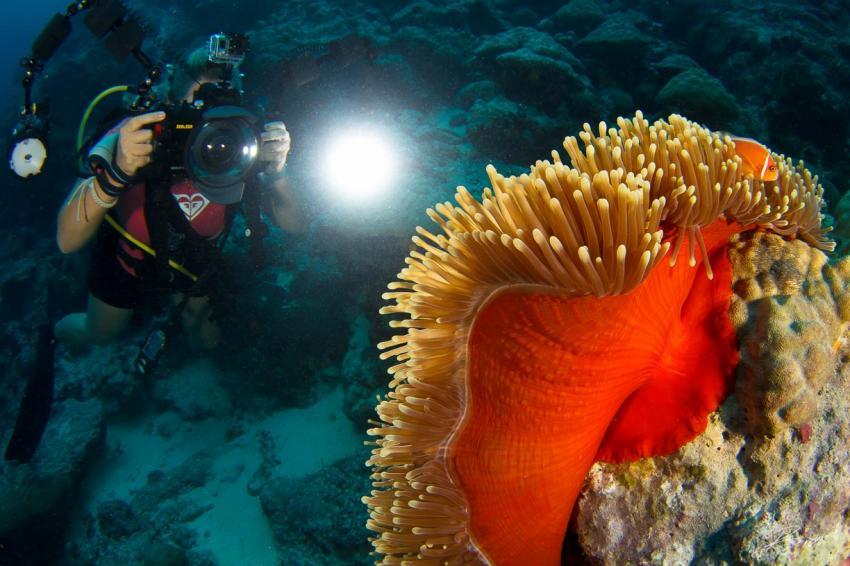M'il Channel, Yap, Mikronesien
