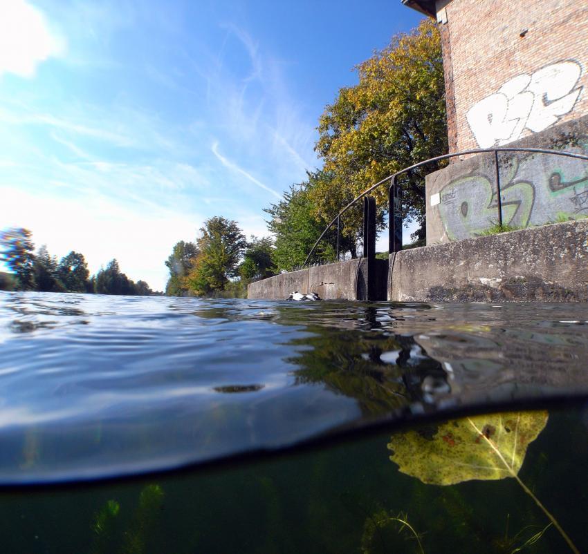 Salle - Elster  Kanal