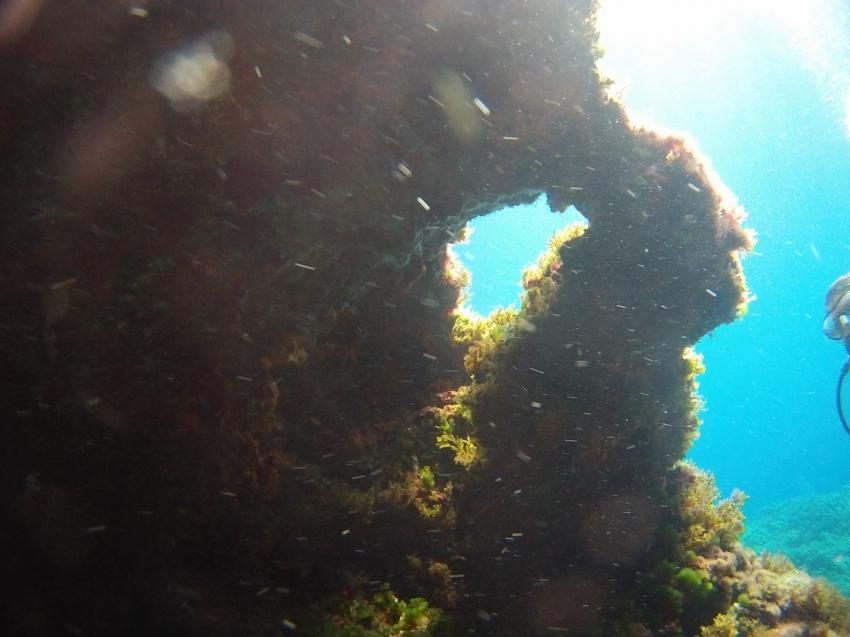 diving Dragonera, Port d`Andratx, Spanien, Balearen