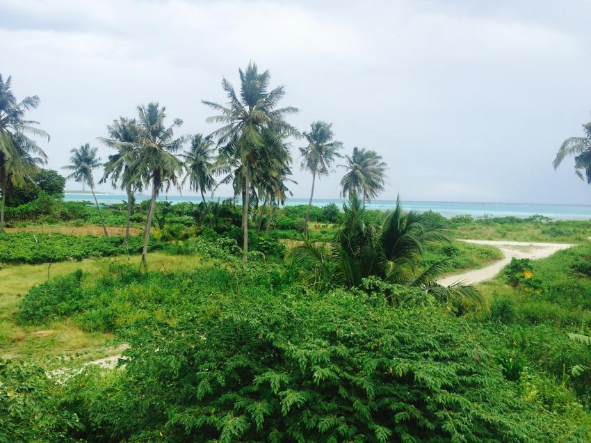 Zimmerausblick , Shamar Divers Maamigili, Malediven