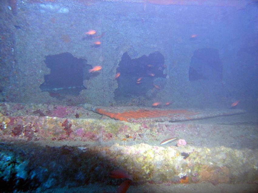HMS Cricket, Wrack der HMS Cricket,Zypern