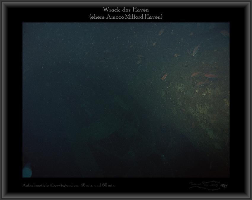 Wrack der Haven, Netze, Fische, Wrack Haven (ehem. Amoco Milford Haven),Italien