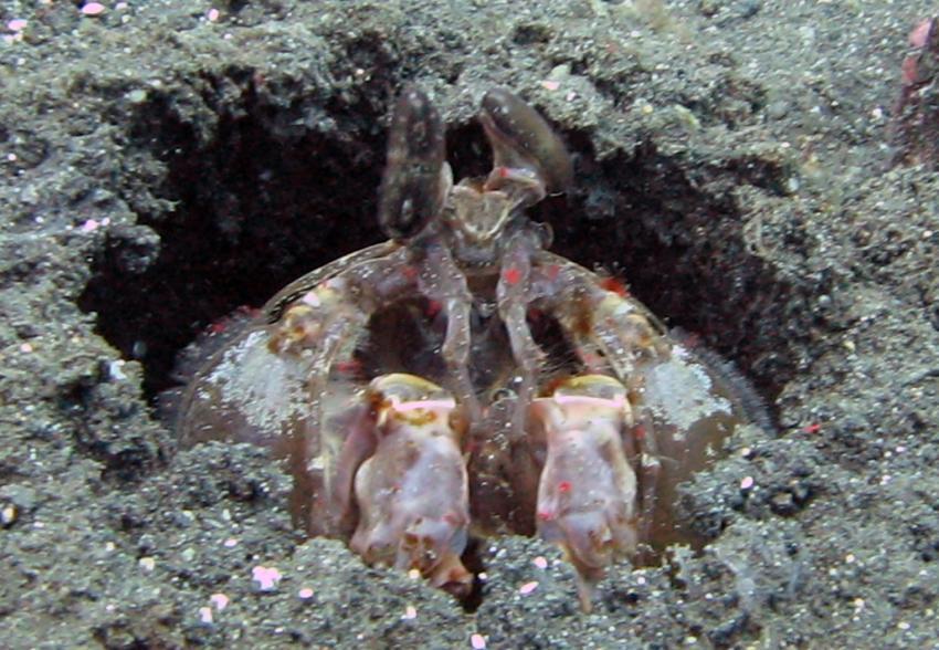 U.S.A.T. Liberty, Tulamben, Liberty Wreck,Tulamben,Indonesien