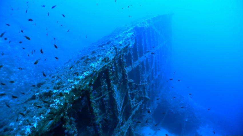 Patris Wrack, Patris Wrack, Kea, Kea Divers, Kea, Griechenland