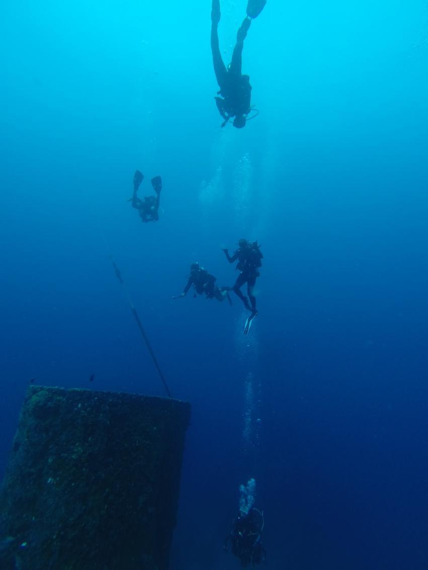 USCC Duane , AOWD, Sons of Poseidon, Key Largo, USA, Florida