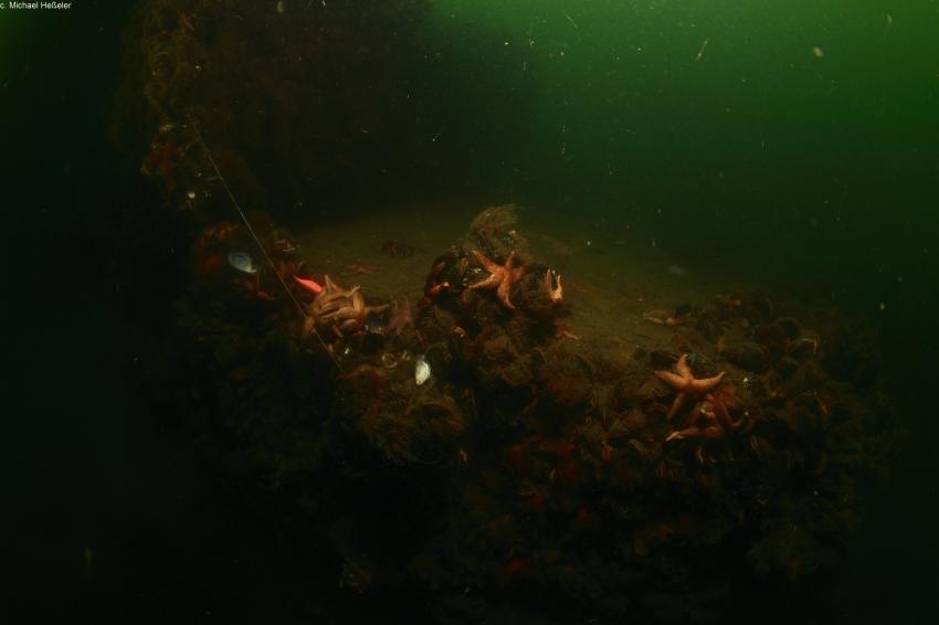 Ostseewracks, Wracks,Dänemark