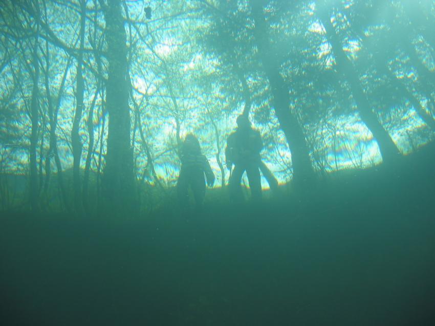 Altwasser Kirnsteinsee