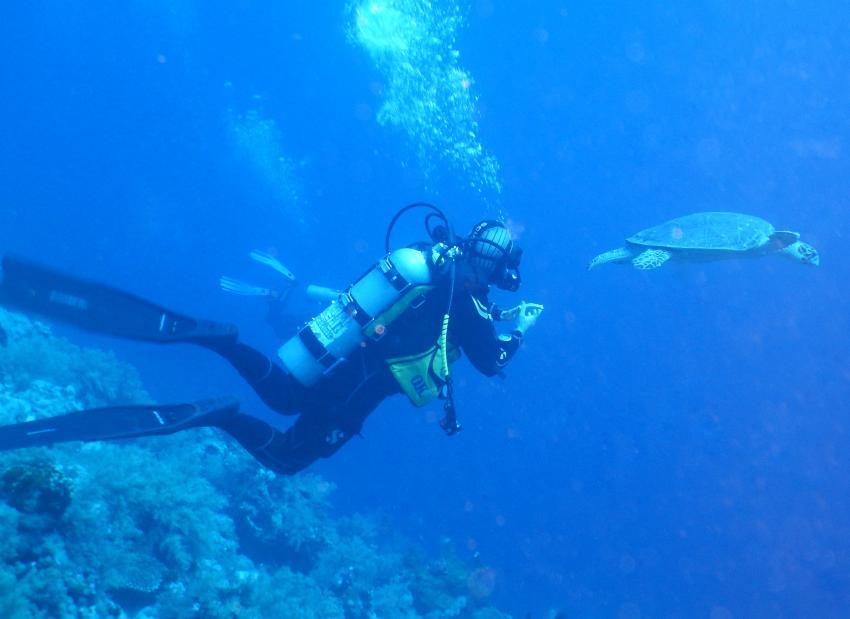Maria und Schildi, Dive In, Hotel Renaissance Golden View Beach Resort, Sharm El Sheikh, Ägypten, Sinai-Süd bis Nabq