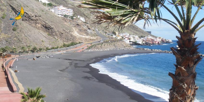 Strand la Nea, Teneriffa, Spanien, Kanarische Inseln