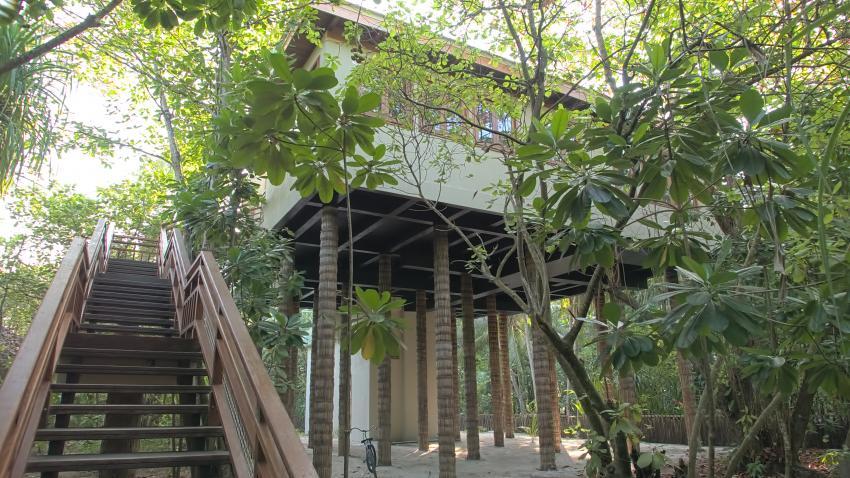 """Wellness Tree House"" von unten, Dive Butler, Amilla Fushi, Malediven"