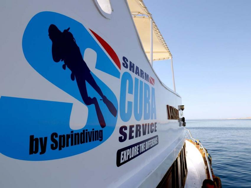 M/Y Nausicaa, Sharm Scuba Service by Sprindiving, Ägypten, Sinai-Süd bis Nabq