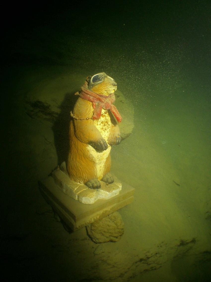 Pauli bei besten Sichtverhältnissen im Dezember, Atlantis Place, Österreich