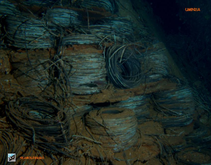 Umbria Lagerraum , Sudan Wingate Reef Seawolf Safari Umbria, Umbria - Wingate Reef, Sudan