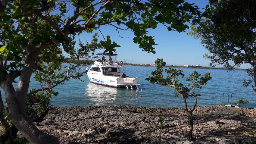 Blick über die Bucht, an der die Hotels liegen, Blue World, Playa Pesquero, Kuba