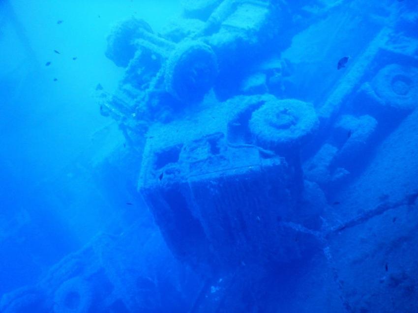 Zenobia-Wrack, Clownfish´s Diving, Ayia Napa, Zypern