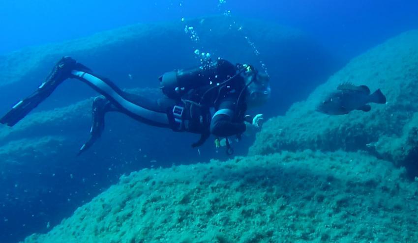 Gimmy a kiss, long trip to Corsica, Proteus Diving, Baia Sardinia (Sardinien), Italien, Sardinien