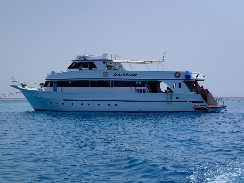 M/Y Sea Dream, Ägypten