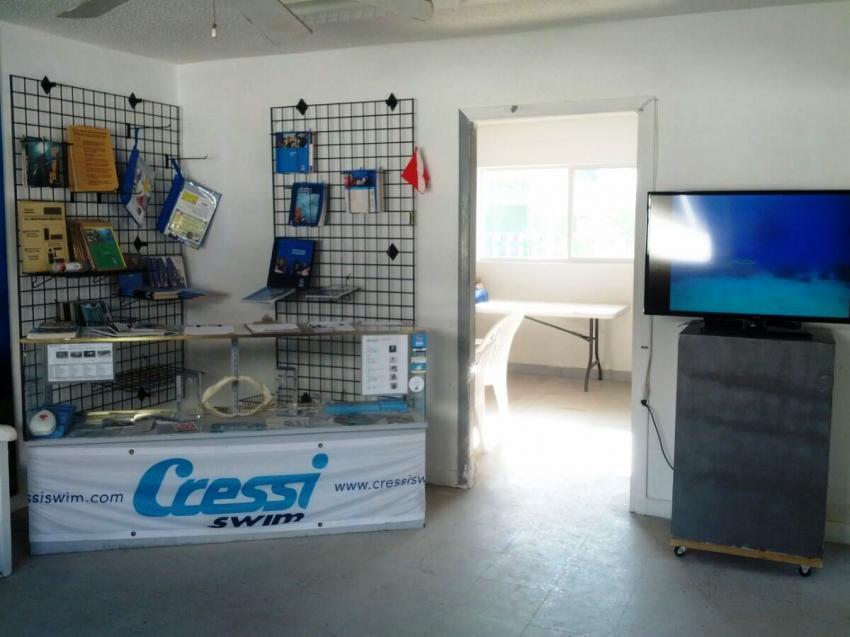 Reef Oasis Viva Bahamas - Front office, Tauchen auf bahamas, tauchen mit haien, tauchbasis bahamas, Viva Diving, Grand Bahama, Bahamas