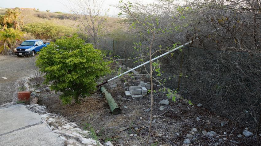 in der Anlage, Apartments Watapana, Niederländische Antillen, Curaçao