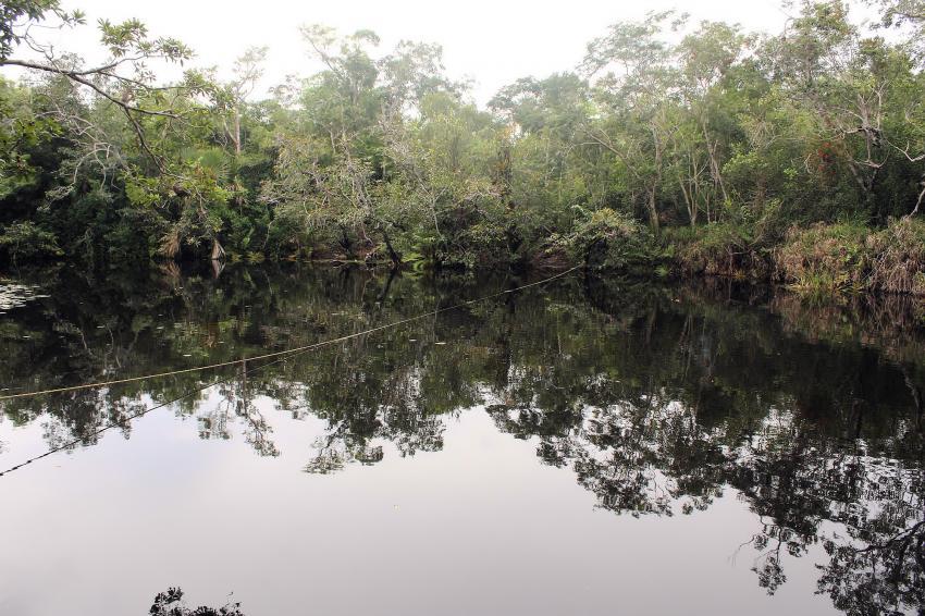Cenote Aktun-Ha (CarWash), Cenote Aktun-Ha (CarWash),Mexiko