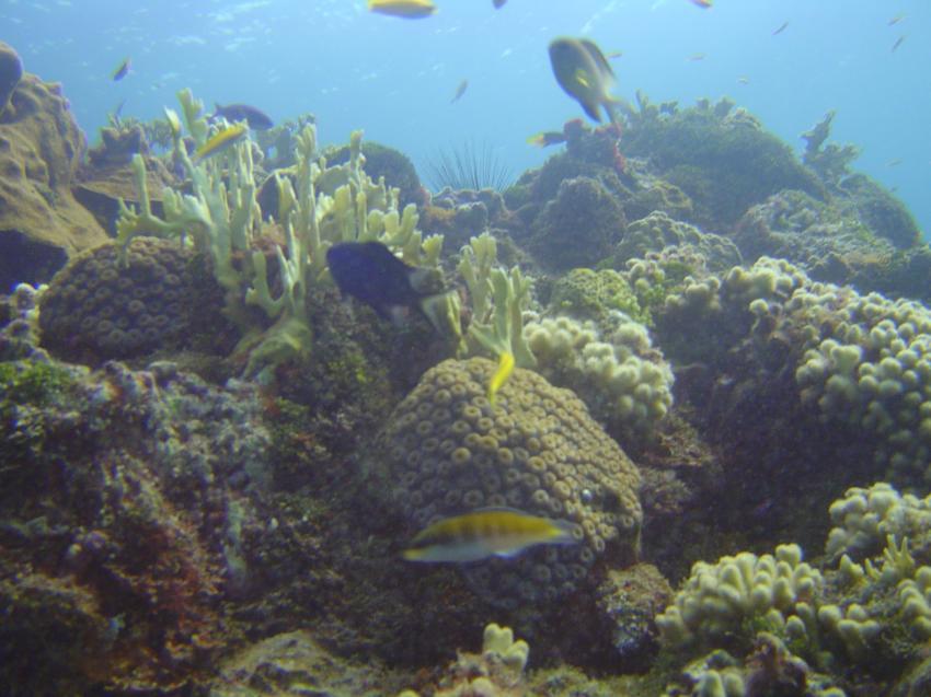 Runaway Bay, St. Ann´s, Runaway Bay,St. Ann´s,Jamaika