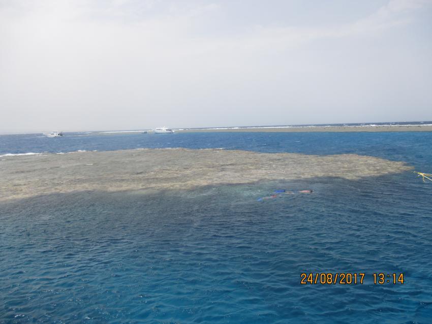 Wonderful Dive, Akassia LTI & Calimera, Ägypten, El Quseir bis Port Ghalib