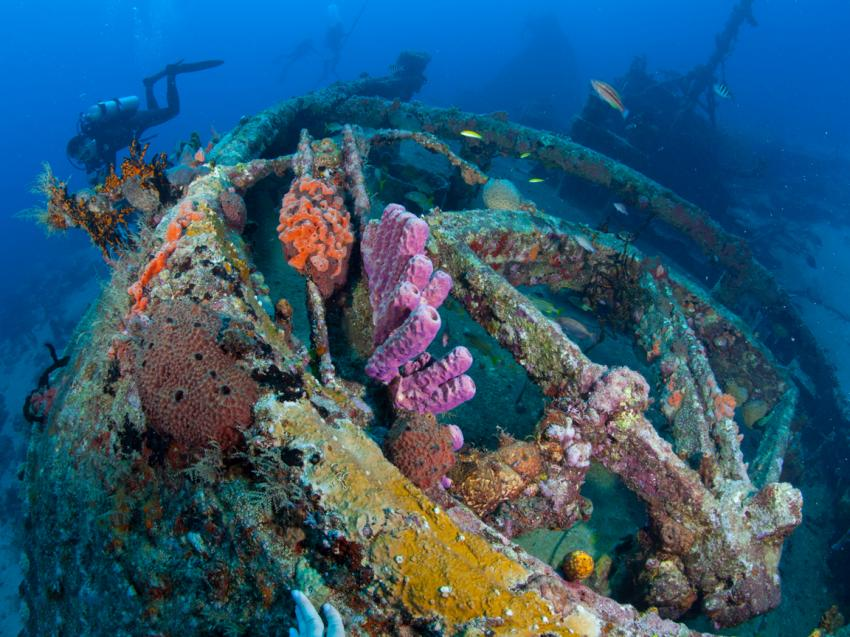 Wracktauchen, Underwater-Emotions, Boca Chica, Dominikanische Republik