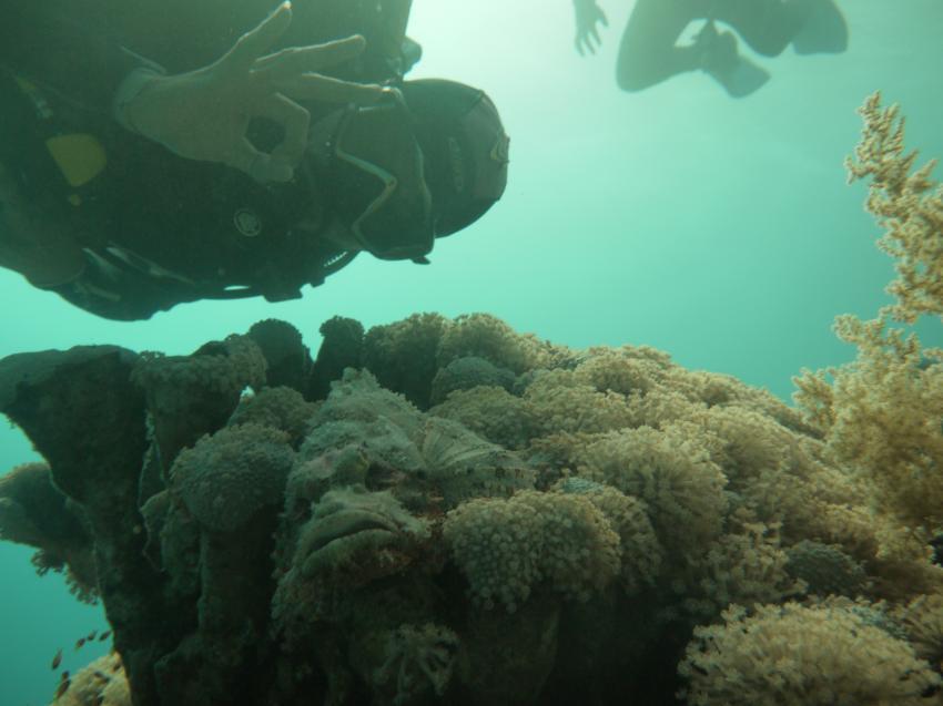 Dive Urge Dive Resort, Dahab, Ägypten, Sinai-Nord ab Dahab