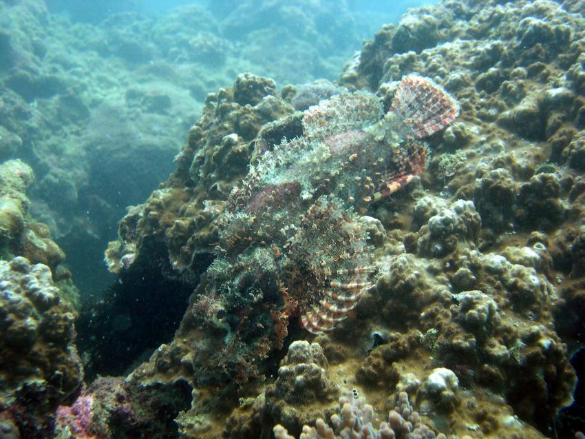 Phuket - Insel Koh Pu, Phuket - Koh Puh,Thailand